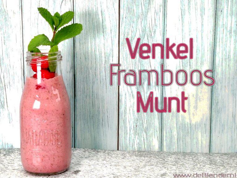 Venkel Smoothie met Framboos en Munt